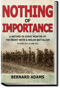 Nothing of Importance by John Bernard Pye Adams